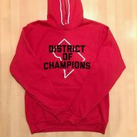Unisex Hoodie - DISTRICT of CHAMPIONS - Heather Red (Navy & White print)